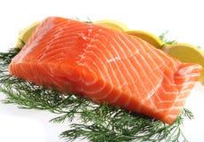 Salmoni con aneto ed il limone Immagine Stock