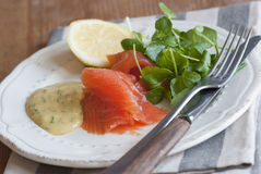 Salmoni con crescione Fotografia Stock