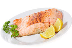 Salmoni cotti immagine stock libera da diritti