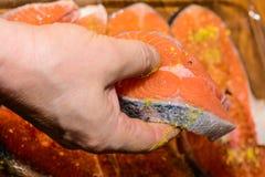 Salmoni crudi Immagine Stock