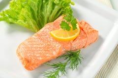 Salmoni cucinati Immagini Stock Libere da Diritti