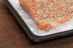 Salmoni di cottura sul salgemma Immagini Stock