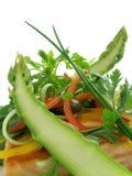 Salmoni di Panfried con asparago ed insalata 3 fotografie stock libere da diritti
