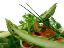 Salmoni di Panfried con asparago ed insalata 4 immagini stock libere da diritti