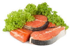 Salmoni e lattuga isolati Fotografia Stock