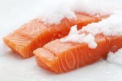 Salmoni freschi sul ince Fotografia Stock
