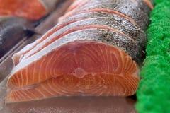 Salmoni imbronciati Immagini Stock