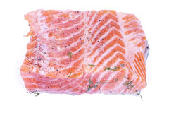 Salmoni isolati Immagine Stock Libera da Diritti