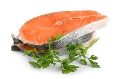 Salmoni isolati Fotografia Stock