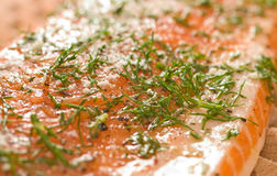 Salmoni o trota iridea con aneto pronto da cucinare Fotografia Stock