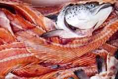 Salmons Στοκ φωτογραφίες με δικαίωμα ελεύθερης χρήσης