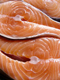 Salmons fillets. Fresh & tasty fish Royalty Free Stock Photos