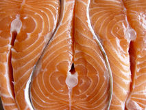 Salmons fillets. Fresh fish Stock Images