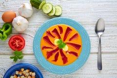 Salmorejo tapas karmowy surowy pomidorowy zupny Hiszpania Zdjęcie Stock