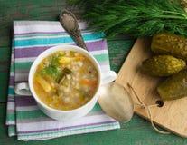 Salmoura - sopa do russo Fotografia de Stock