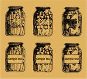 Salmueras caseras Foto de archivo libre de regalías