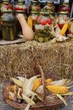 Salmueras del otoño y una cesta de mazorcas de maíz imagen de archivo