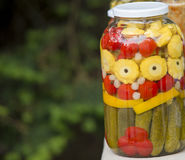 Salmueras deliciosas de las verduras Fotografía de archivo libre de regalías