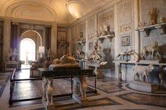 Salão dos animais Fotografia de Stock Royalty Free