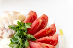 Salo tomatoes parsley onion and garlic on the table Stock Photography
