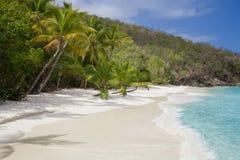 Salomon Beach en el parque nacional de las Islas Vírgenes de los E.E.U.U. en St John en las Islas Vírgenes de los E.E.U.U. foto de archivo libre de regalías