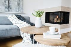 Salon chaud avec la cheminée image libre de droits