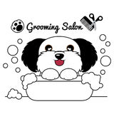 Salon de chien de toilettage Photos libres de droits