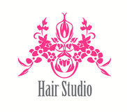 Salon de coiffure Logo Icon Photographie stock libre de droits