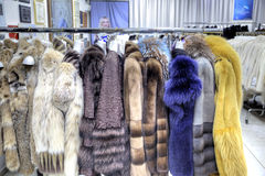Salon on the sale of fur fur coats Stock Photo