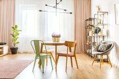 Salon spacieux avec le ficus photo stock