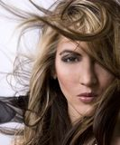 Salon style. Healthy beautiful long hair in motion created by wind, fashion look Stock Photography