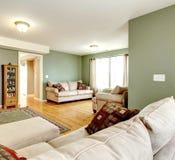 Salon vert avec une TV image stock