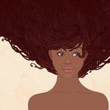 Salone di bellezza: Donna abbastanza giovane dell'afroamericano illustrazione vettoriale