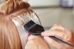 Salone di capelli. Coloritura. Fotografia Stock Libera da Diritti