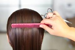 Salone di capelli Taglio di capelli della donna taglio Immagini Stock Libere da Diritti