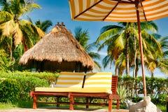 Salones vacíos de la calesa con los colchones rayados amarillo-blancos que se colocan debajo de un paraguas de sol con el mismo m imagen de archivo libre de regalías