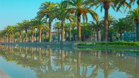 Salou, Spain, Palm trees promenade and palm tree reflection. Costa Daurada in Catalonia, Spain, shot in RAW 4K stock footage