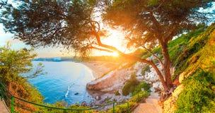 Salou spain solig seascape Gröna träd och gräs på den Costa Dorada kusten fodrar royaltyfri foto