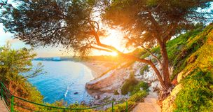 Salou. Spain. Sunny seascape. Green trees and grass on Costa Dorada coast line. Summer tropical resort. Beautiful vivid mediterranean seashore royalty free stock photo
