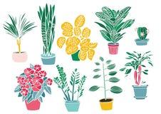 Salowe rośliny i kwiaty, ręka rysunek, set Obrazy Royalty Free