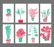 Salowe rośliny i kwiaty, ręka rysunek, set Obrazy Stock