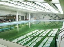 salowego basenu dopłynięcie Fotografia Stock