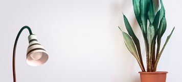 Salowej rośliny Sansevieria i elegancka lampa przeciw białej ścianie Skandynawski wewnętrzny pojęcie obraz stock