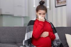 Salowy horyzontalny strzał zmęczona chora brunetki kobieta działającego nos i zimno, czuje bolączkę, szkocką kratę na ramionach,  obrazy royalty free