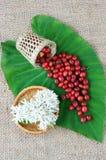 Salowy wystrój, kawowa fasola, cukierniany kwiat Zdjęcie Stock
