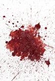 Salpicón rojo del fango Foto de archivo libre de regalías