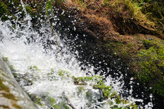 Salpica del agua Fotografía de archivo