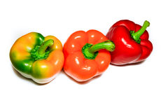 Salpica a paprika Imagem de Stock