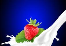 Salpicar la leche con la fresa Fotografía de archivo