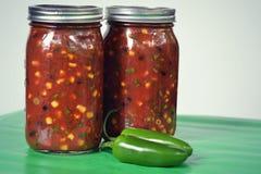 salsa Fotos de Stock Royalty Free
